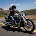Harley-Davidson V-Rod 10th Anniversary: celebrando 10 años de revolución