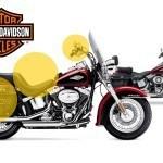 Harley te propone dar un toque a tu FLSTC Softail Heritage Classic