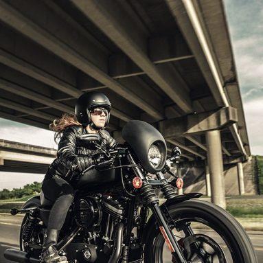 Harley-Davidson IRON 883, estética vintage