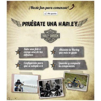 ¿Quieres saber cómo te queda tu Harley-Davidson preferida?