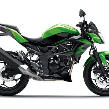 Kawasaki Z 250 2016